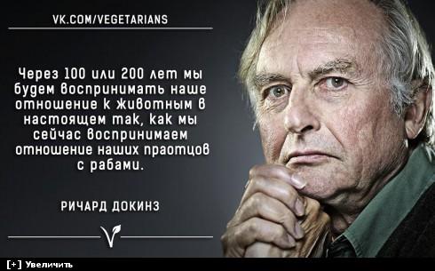 https://i5.imageban.ru/thumbs/2013.12.01/ce8c7ce4df90f4c5f786ee75fb7c506b.jpg