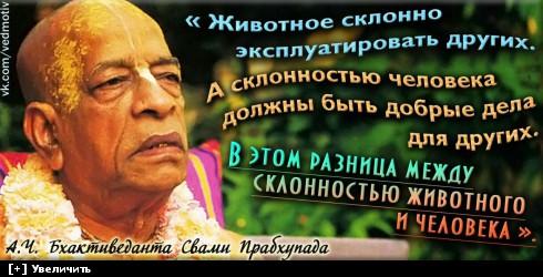 http://i5.imageban.ru/thumbs/2013.12.13/3deb227512b1dadbe7df1e2e5a9c1c77.jpg