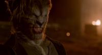 ����� / Wolves (2014) WEB-DLRip-AVC | DUB | ��������