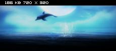 Волшебная страна чудес / Magic Wonderland (2014) Web-DLRip | DUB