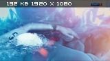 ��������� ����. ��������. ���� 8. ������ [09.08] (2015) HDTV 1080i