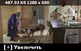 http://i5.imageban.ru/thumbs/2017.08.12/191584ab38e6f0638655376e2529e248.jpg