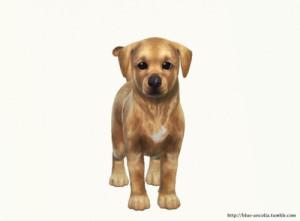 Собаки - Страница 2 F36ab821ef463b51da9bb467cb2032b0