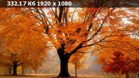 08de45944e1b9473335e53252643c060.webp